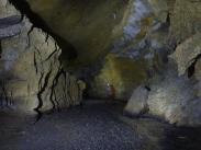 canyon fossile de la galerie des hormones